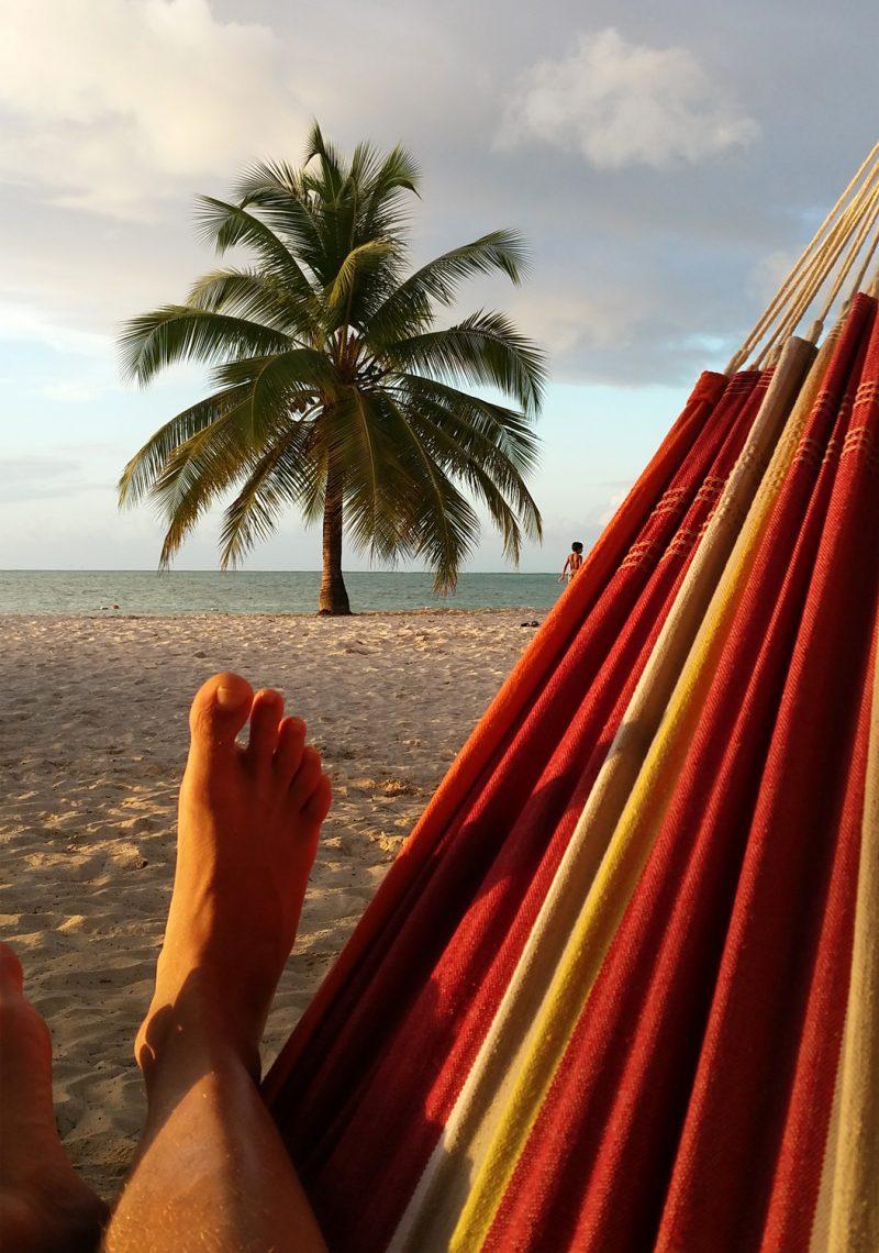 Amazonas hängmatta Barbados acerola detalj