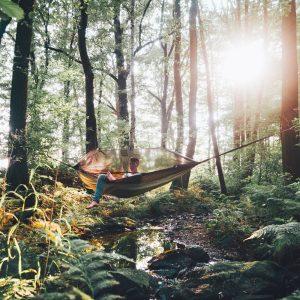 Amazonas Moskito Traveller hammock thermo i skogen